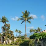 Aston Maui Hill