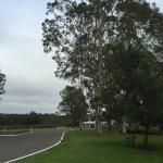 Spicers Vineyards Estate Foto