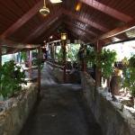 Foto de Tarzilandia Bar Restaurant