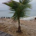 Sapphire Beach Resort Foto