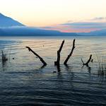 Foto de Jardines del Lago