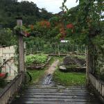 Foto de Belcampo Lodge