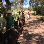 Mowbray Park Farm - Day Visits