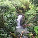 Annandale waterfalls
