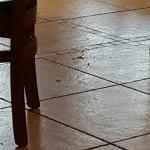 One of the floors mentioned