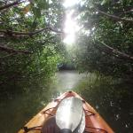 Florida Keys Kayak and Paddleboard