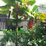 Foto de Bwa Chik Hotel & Golf