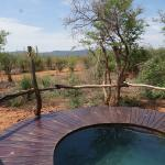 Plunge pool in every room