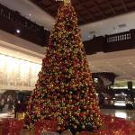 Рождественская елка. 26 декабря 2015
