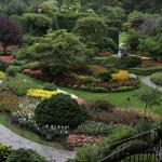Brilliant Landscaping
