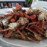 Salt baked mud crabs