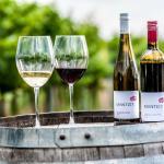 Weingut Mantler