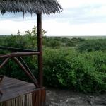 Foto de Rift Valley Photographic Lodge