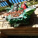 Rainforest Cafe Photo