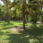 Villa Guaiamu Hotel Foto