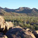 Photo de Signal Hill Trail