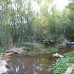Big Shield Forest Park Foto