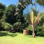 Внутренний дворик-садик