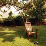 The bungalow's front lawn for quiet contemplation