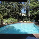 une jolie piscine en foret
