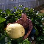 We grow giant pumpkins
