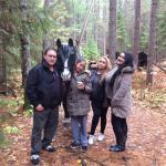 Algonquin Provincial Park Foto