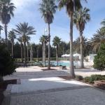 Zona de piscina y jacuzzi