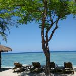 Some pictures of the beach of Bollata, and the bungalow very clean and comfortable