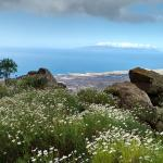 Blick auf die Küste und auf La Gomera