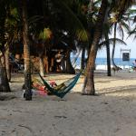 place for hammocks and parties