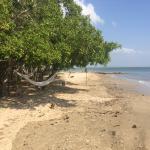 Foto de Playa Manglares