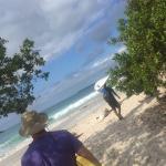 Vta Surf n' Dive School Foto