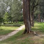 Foto de Taman Selera