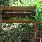 Jungle Bay Welcome Sign
