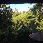 Bidadari Private Villas & Retreat - Ubud Foto