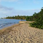 Vieques National Wildlife Refuge Foto