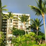 VIEW OF APARTMENTS FROM BEACH