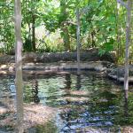 Reflexology pool