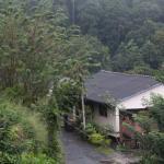 Photo de Nature Walk Resort