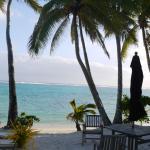 Little Polynesian Restaurant & Bar Foto