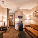 Foto de Holiday Inn Express Hotel & Suites Roseville-Galleria Area