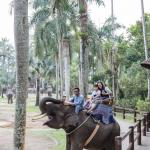 Elephant Safari Park & Lodge Foto
