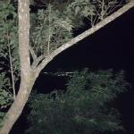 Vista nocturna desde La Cabaña.