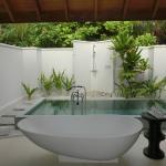 プールはバスタブ、内庭側にちょこんとあります。