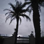Photo de The Promenade