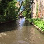Foto de Canal Boat Tours