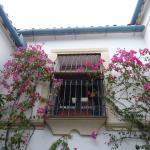 Foto de Patios de Córdoba