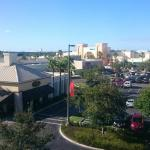 Foto de Hampton Inn & Suites Lakeland-South Polk Parkway