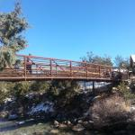 Mount Princeton Hot Springs Resort Foto