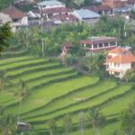 northwest view, off same balcony